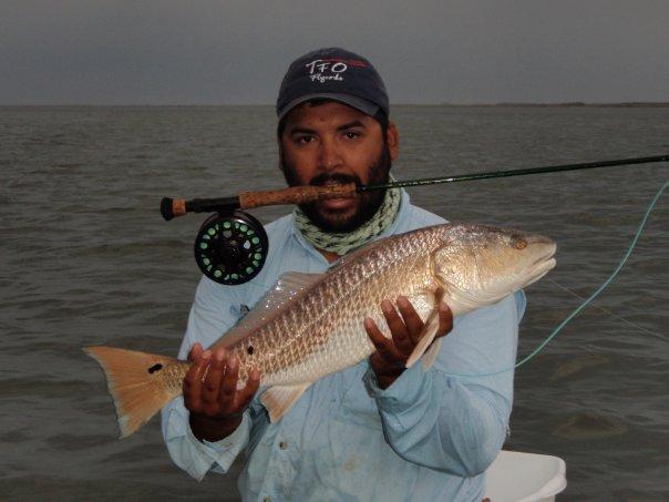 Redfish caught on a gurgler