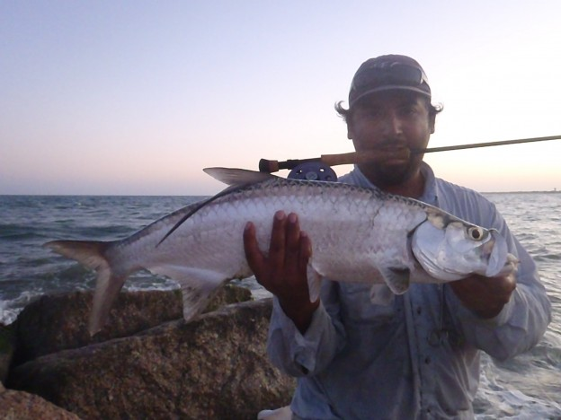 Lucky tarpon fly fishing Don Alcala