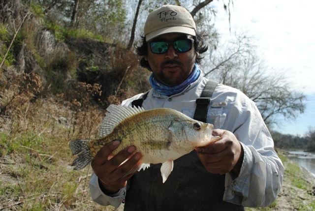 Don Alcala Crappie Fly Fishing Nueces River
