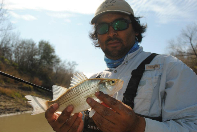 Don Alcala Fly Fishing Crappie Nueces River